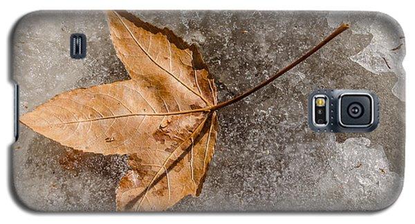 Golden Leaf Galaxy S5 Case