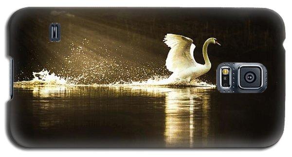 golden Light Galaxy S5 Case by Rose-Marie Karlsen