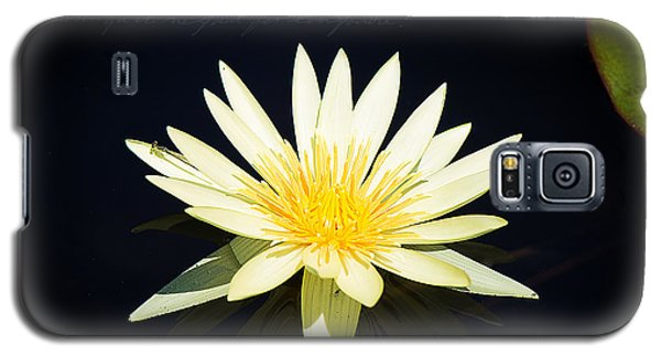 Golden Lily Galaxy S5 Case