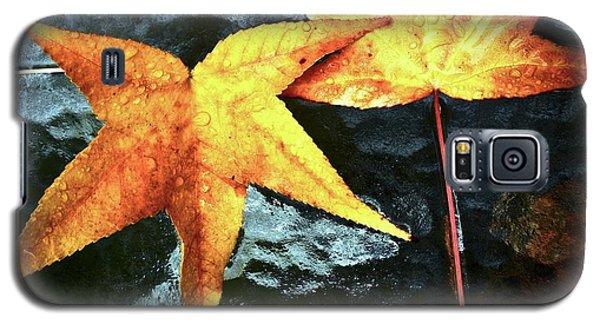 Golden Liquidambar Leaves Galaxy S5 Case