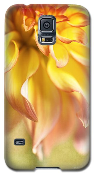 Golden Moments Galaxy S5 Case