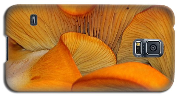Golden Mushroom Abstract Galaxy S5 Case