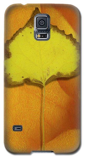 Golden Oldie Galaxy S5 Case