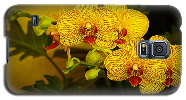 Golden Orchids Galaxy S5 Case