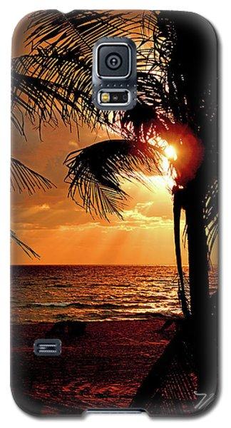 Golden Palm Sunrise Galaxy S5 Case by Meta Gatschenberger