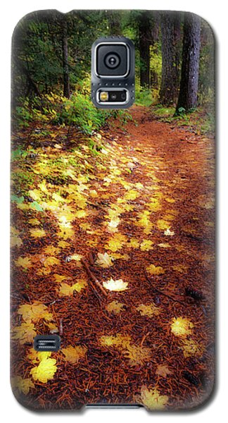 Galaxy S5 Case featuring the photograph Golden Path by Cat Connor