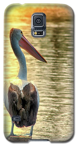 Golden Pelican Galaxy S5 Case