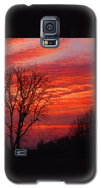 Golden Pink Sunset With Trees Galaxy S5 Case