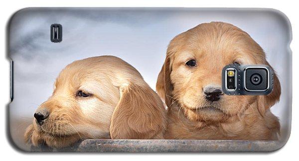Golden Puppies Galaxy S5 Case
