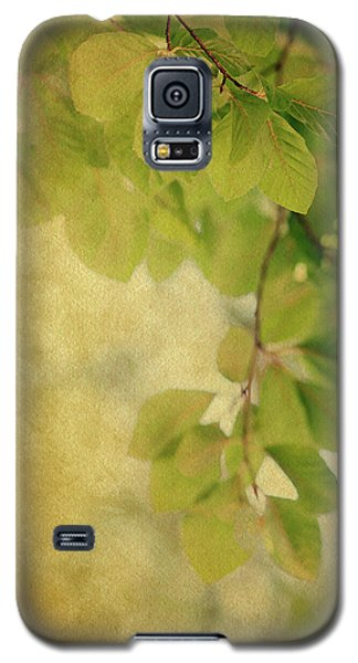 Galaxy S5 Case featuring the photograph Golden by Rebecca Cozart
