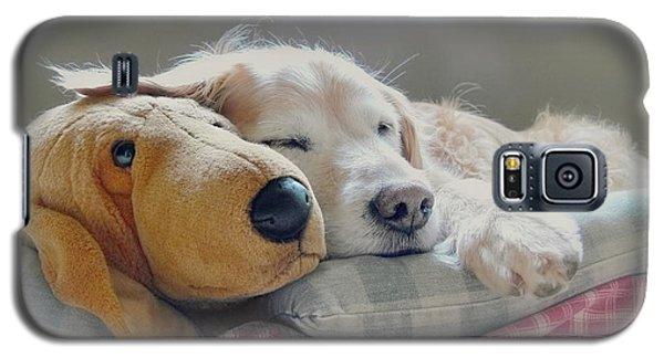 Golden Retriever Dog Sleeping With My Friend Galaxy S5 Case