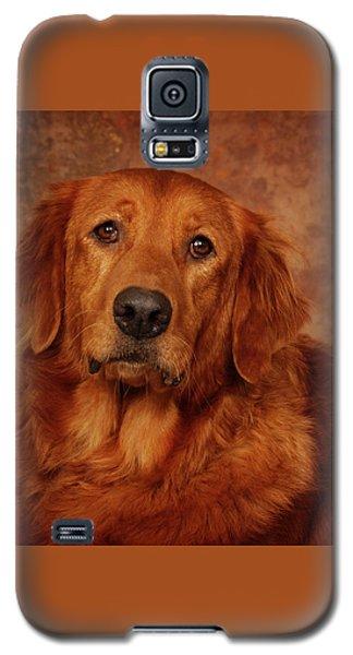 Galaxy S5 Case featuring the photograph Golden Retriever by Greg Mimbs