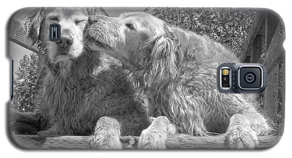 Golden Retrievers The Kiss Black And White Galaxy S5 Case by Jennie Marie Schell