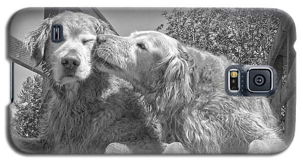 Golden Retrievers The Kiss Black And White Galaxy S5 Case