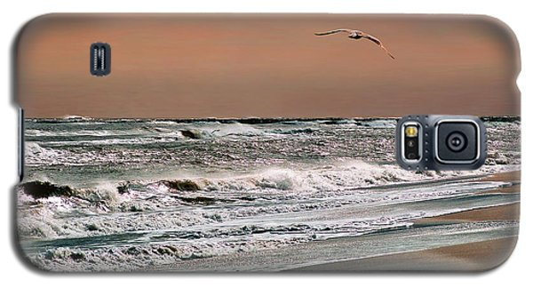 Golden Shore Galaxy S5 Case