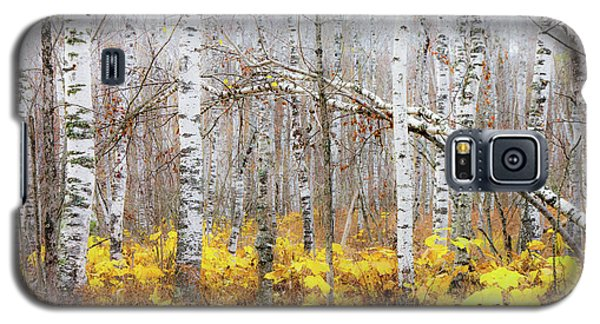 Galaxy S5 Case featuring the photograph Golden Slumbers by Mary Amerman