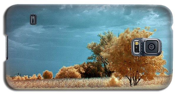 Golden Summerscape Galaxy S5 Case