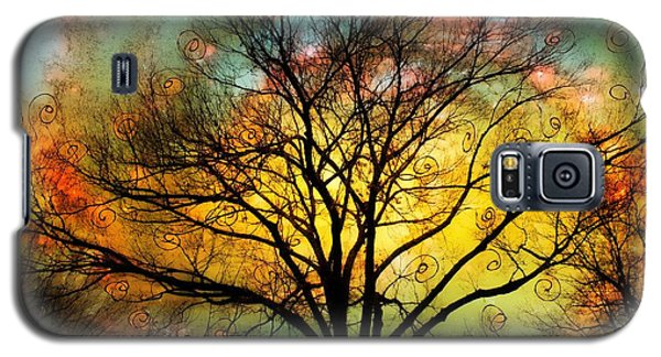 Golden Sunset Treescape Galaxy S5 Case by Barbara Chichester