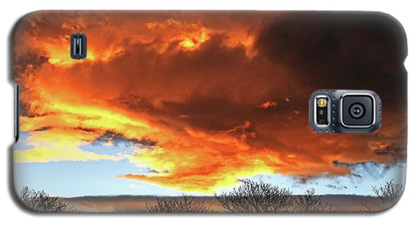 Golden Sunset With Filigree Trees Galaxy S5 Case