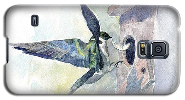 Golden Swallow Galaxy S5 Case
