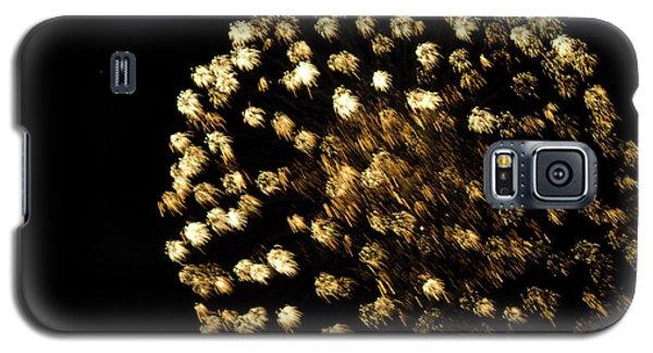 Galaxy S5 Case featuring the photograph Golden by Tara Lynn