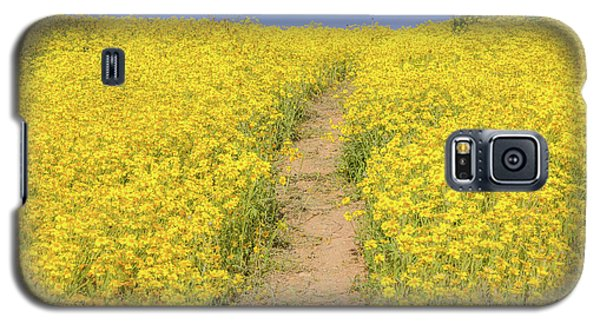 Galaxy S5 Case featuring the photograph Golden Trail by Marc Crumpler