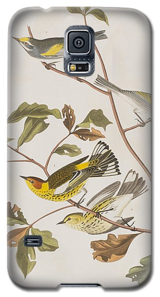 Golden Winged Warbler Or Cape May Warbler Galaxy S5 Case