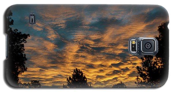 Golden Winter Morning Galaxy S5 Case