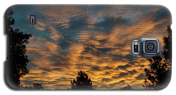 Golden Winter Morning Galaxy S5 Case