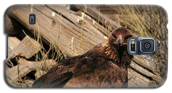 Goldeneagle1 Galaxy S5 Case