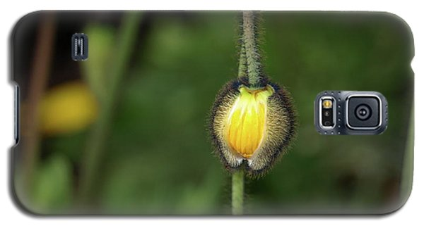Goldengatefloral01 Galaxy S5 Case