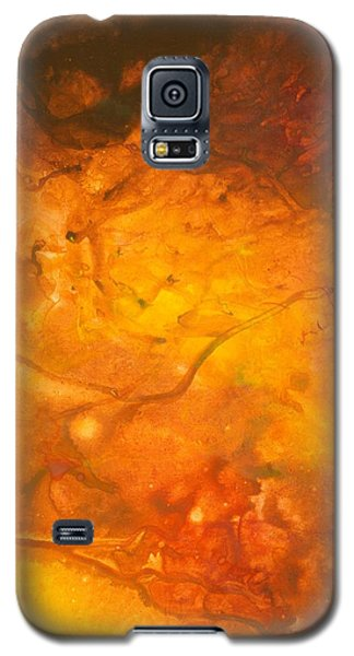 Goldenglow Galaxy S5 Case