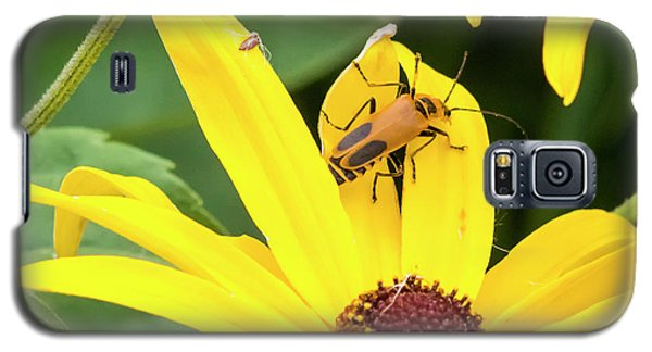 Galaxy S5 Case featuring the photograph Goldenrod Soldier Beetle by Ricky L Jones