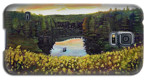 Goldenrods On Davenport Lake-ellijay, Ga  Galaxy S5 Case by Jan Dappen