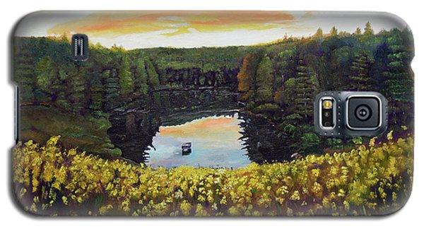 Goldenrods On Davenport Lake-ellijay, Ga  Galaxy S5 Case