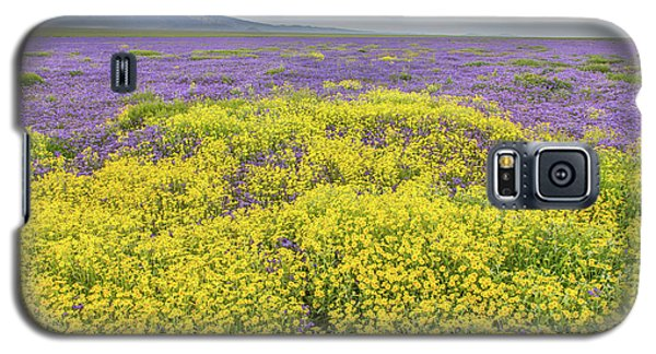 Galaxy S5 Case featuring the photograph Goldfield And Phacelia by Marc Crumpler
