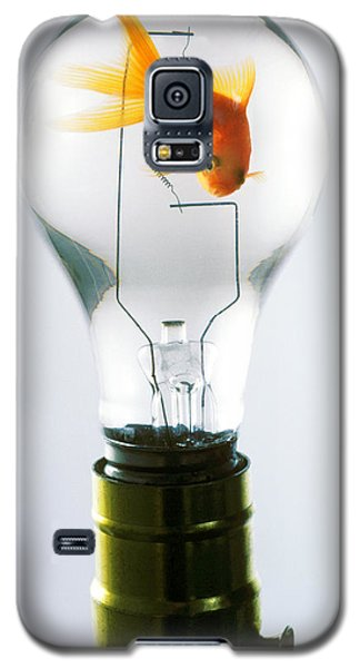 Goldfish In Light Bulb  Galaxy S5 Case