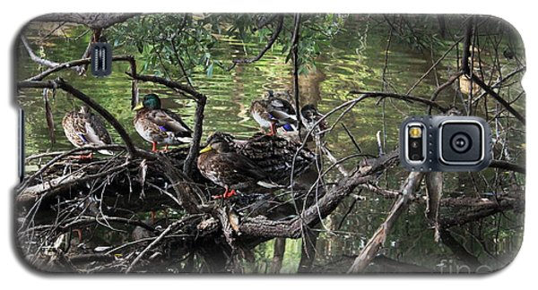 Gone Duck Hunting Galaxy S5 Case by Natalie Ortiz