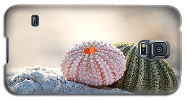 Gone Shelling Galaxy S5 Case