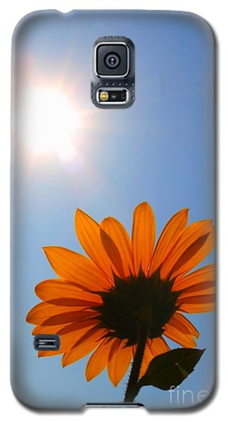 Galaxy S5 Case featuring the photograph Good Day Sunshine by Jesse Ciazza