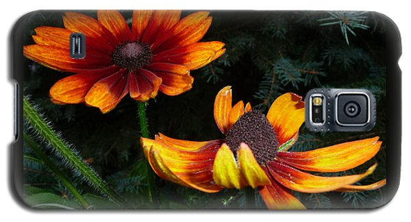 Good Night Susan - Botanical Galaxy S5 Case by Margie Avellino