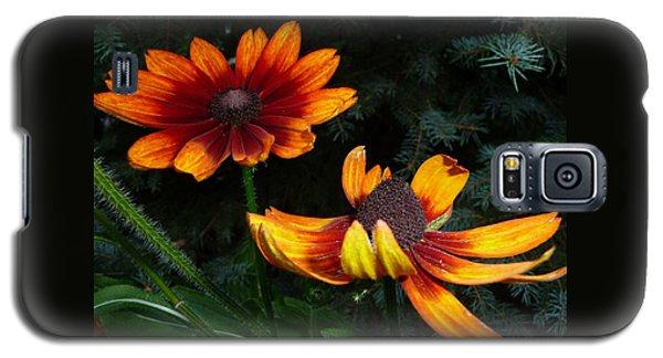 Good Night Susan - Botanical Galaxy S5 Case by Margie Avellino