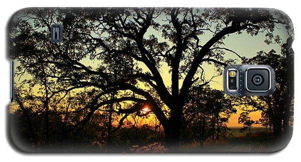 Good Night Tree Galaxy S5 Case