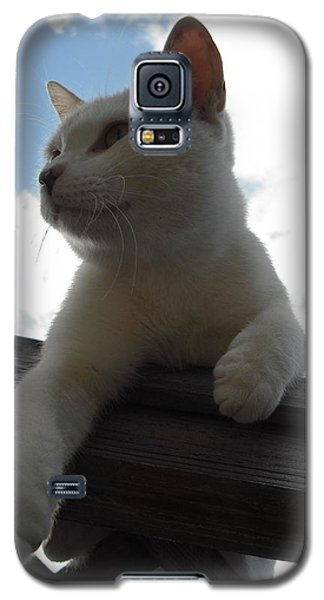 Goodbye Blue Sky Galaxy S5 Case