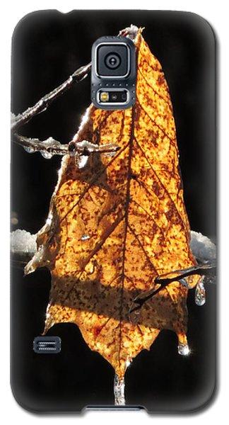 Goodbye To Autumn Galaxy S5 Case