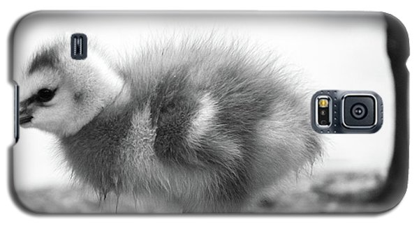Goose Chick Galaxy S5 Case