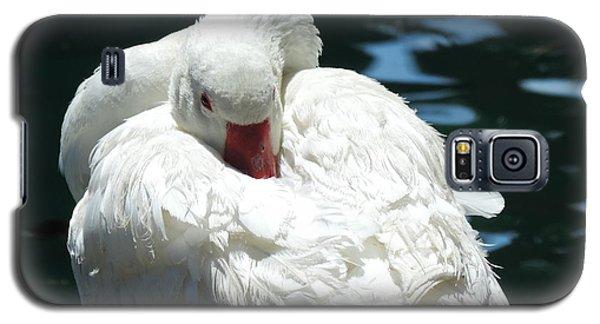 Goose Feather Siesta Galaxy S5 Case