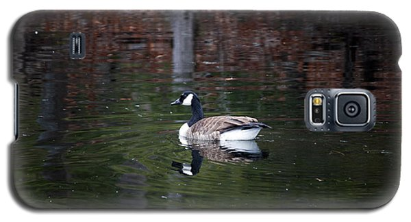 Galaxy S5 Case featuring the photograph Goose On A Pond by Jeff Severson