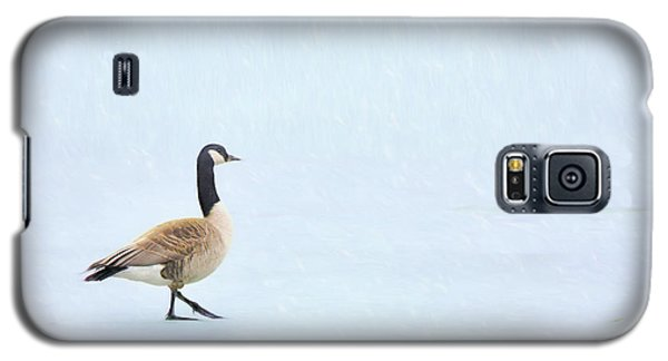 Galaxy S5 Case featuring the photograph Goose Step by Nikolyn McDonald