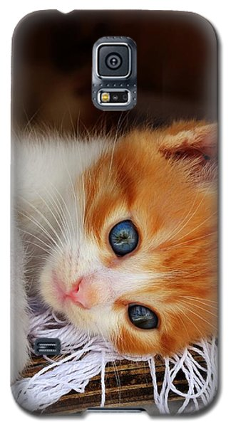 Gorgeous Blue Eyes Galaxy S5 Case